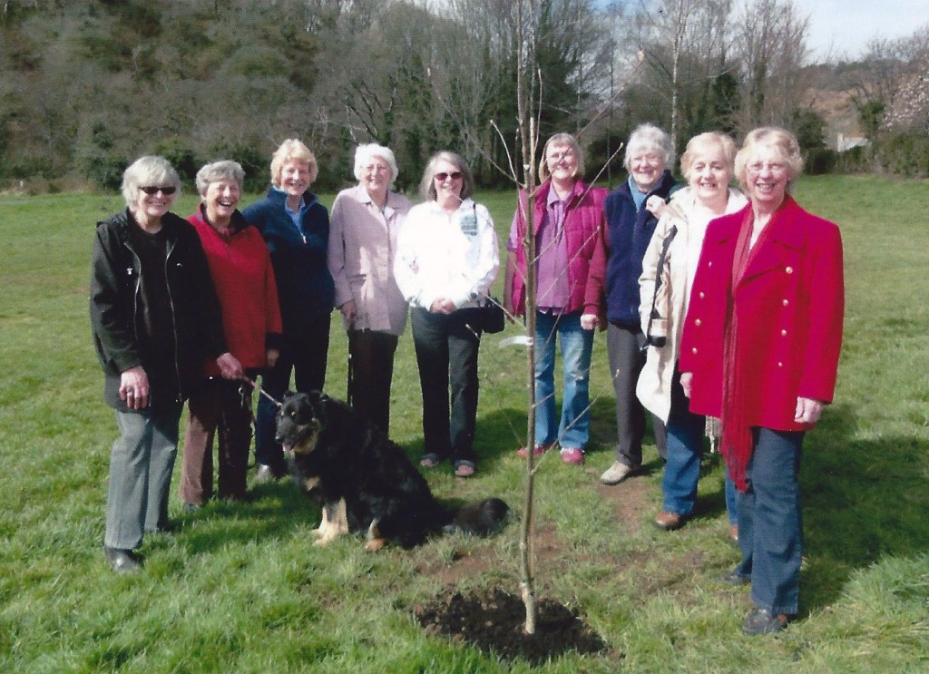 Phoenix Group Photo - Tree Planting